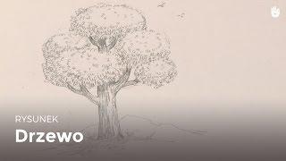 Naucz się rysować łatwo - Drzewo