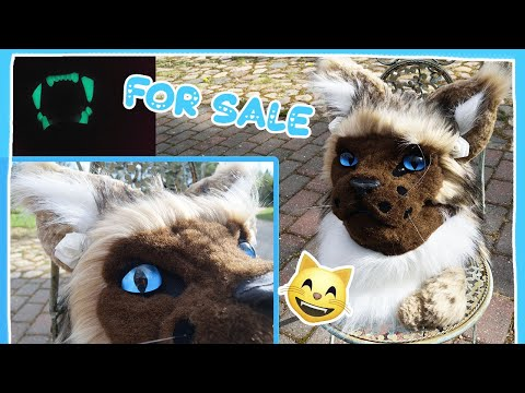 Cat/Lynx FOR SALE by Furry Time Creations