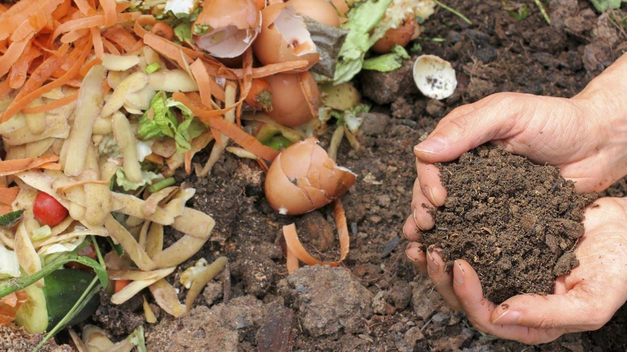 faire du composte maison Le compostage : comment faire son propre compost? - YouTube