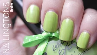 Nail Art Review: #15879 Born Pretty Green Candy Color Nail Polish CE#002 Part 1