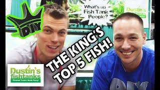 Top Five Aquarium Fish with the King of DIY