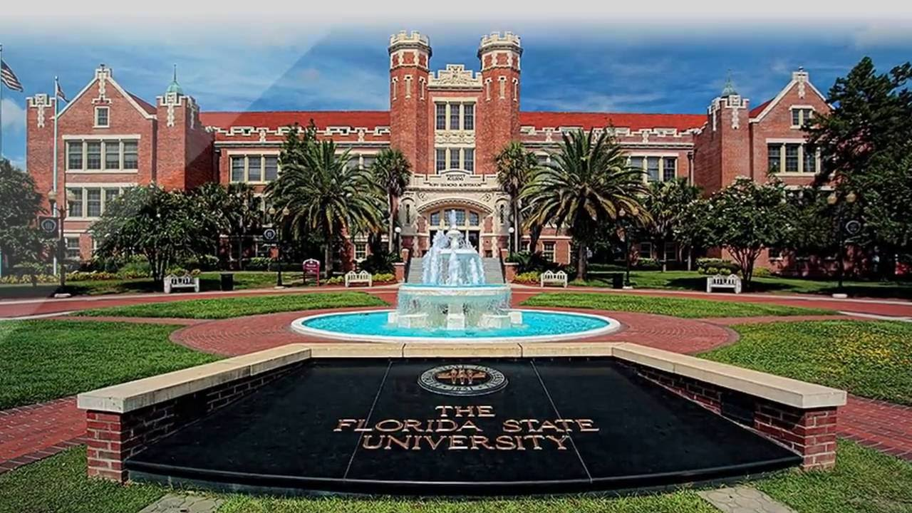 Top 5 university in florida of 2017 united states of for Top arredi floridia