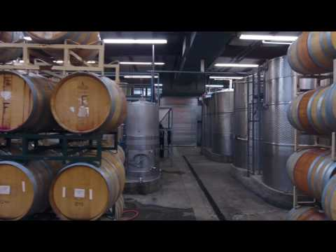 Drone tour of Orfila vineyards and winery