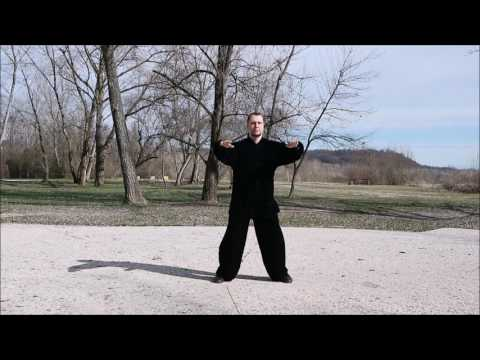 Twelve Meridians Qigong 经络 气功 - Master G. Paterniti Lupo - S