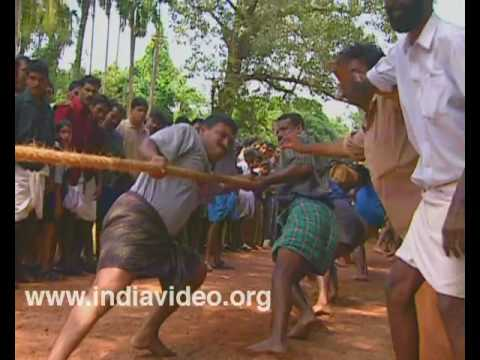 Tug of war during Onam season