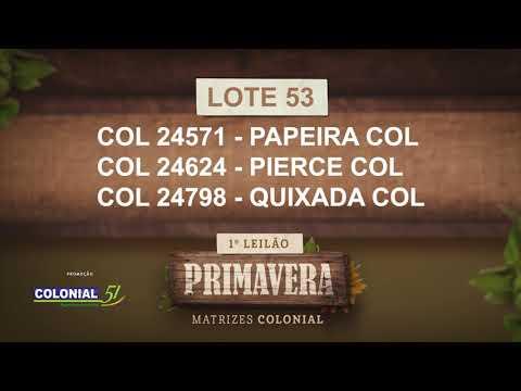 LOTE 53   COL 24571,24624,24798