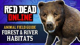 Red Dead Online - Forest & River Habitats Animal Locations Guide [Naturalist Role]
