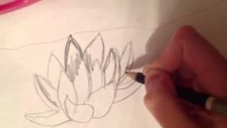 Как нарисовать водяную лилию быстро и легко(, 2014-04-15T19:15:02.000Z)