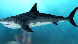 क्या दुनिया की सबसे बड़ी शार्क आज भी जिन्दा है ?   Megalodon- World's Largest Shark - Still Alive?
