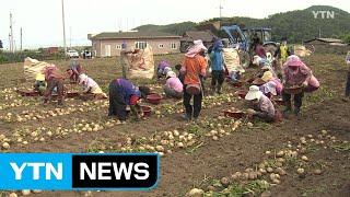 북한 농사 돕는다...농자재 지원 준비 끝 / YTN