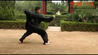 Learn Real Kung Fu----Basic Exercises And Application Of Baji Quan Training