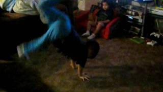 BBOY ADD ROCK NHC