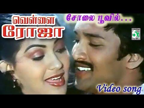 Solai Poovil  Vellai Roja Tamil Movie HD Video Song
