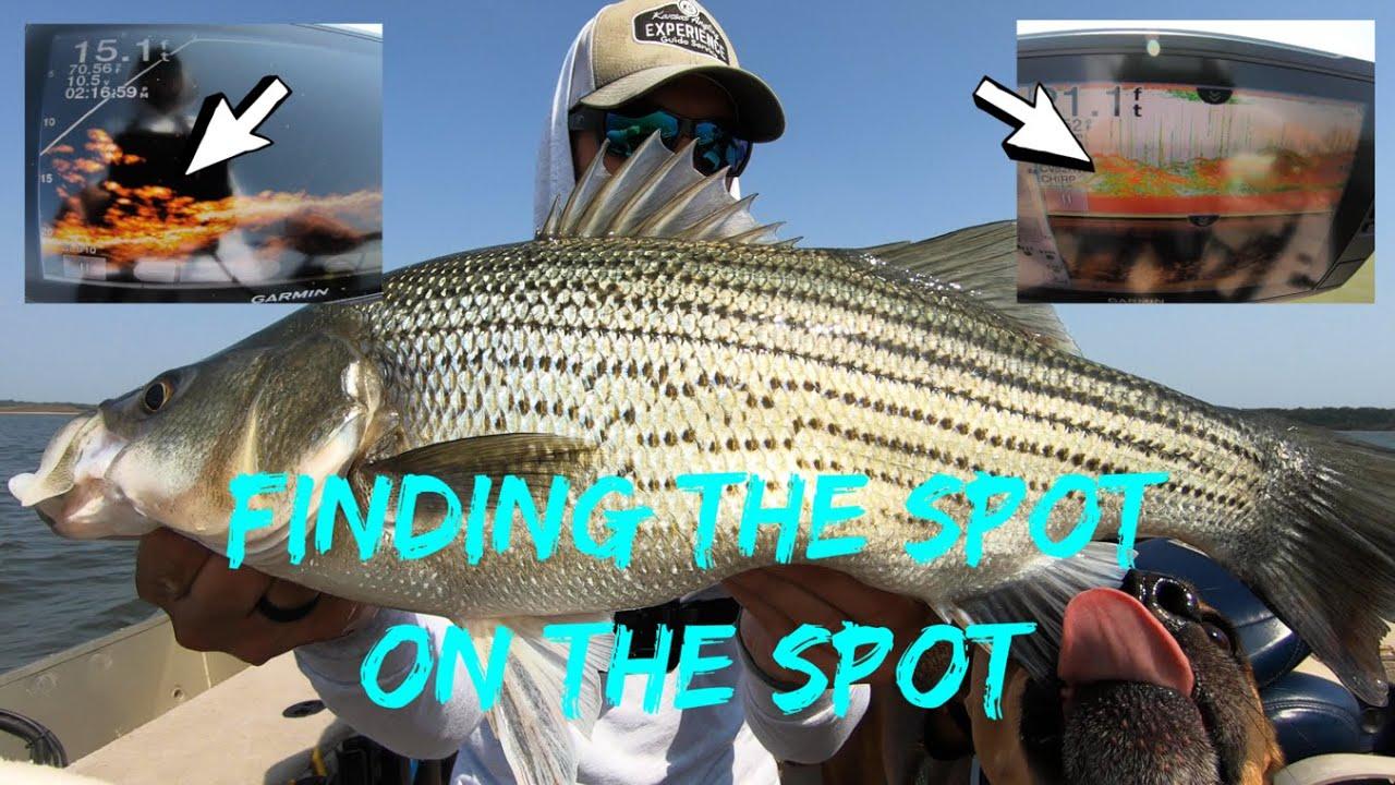 Fishing OFFSHORE | Finding the Spot on the Spot (Garmin Echomap + Livescope)