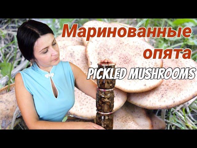 Маринованные опята - самые вкусные опята! / Vinegar pickled honey fungus recipe ♡ English subtitles