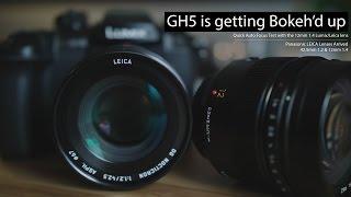 GH5 - Hızlı AF test kadar 12mm 1.4 ile etkisi olur oluyor