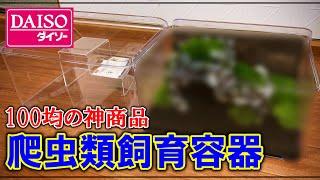 DAISOで見つけた「透明収納ケース」 爬虫類などの飼育に使えるか?試してみました! □石組に最適な接着剤はこちらから購入できます。 【JUN】G-1接着剤 (飾り石・流木 ...