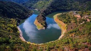 La fuerza de la naturaleza y el trabajo del hombre se dan la mano en la Ribeira Sacra. Ven a empaparte de verde y disfruta del arte como si estuvieras en un ...