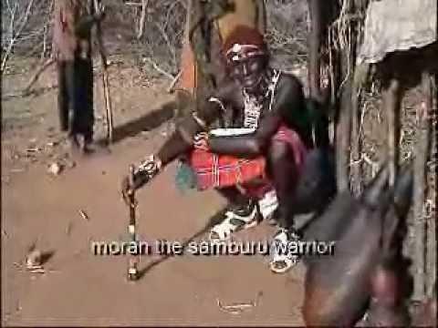 MORAN - The Samburu Warrior