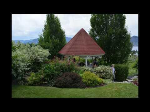 Audrey Anderson's Garden