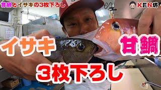 萩産の甘鯛とイサキを3枚下ろしにする動画になります ☆KEN坊チャンネル登録宜しくお願いします↓ ...