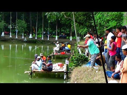 Wonderful Fish Hunting Video Series In Park Fishing Spots