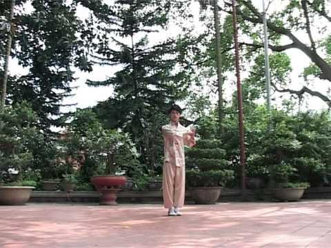 Ngôi sao võ thuật Việt Nam toàn cầu - Ngũ hình quyền