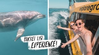 We Finally SWAM WITH DOLPHINS! + Delicious New Zealand Farmer