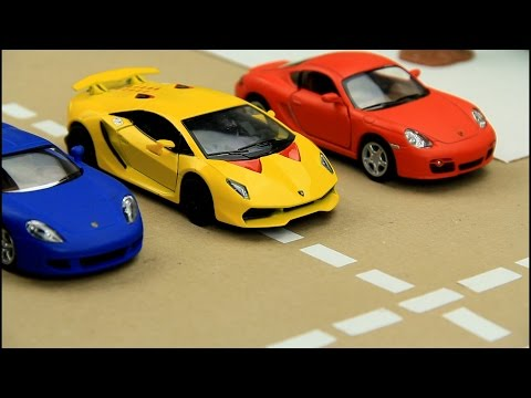 Sport Cars | Racing Cars | Video for Kids