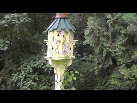 HTS - Doser's Secret Garden  7-14-17