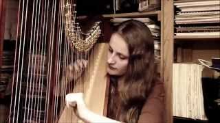 Shake It Off - Taylor Swift (Harp Cover)