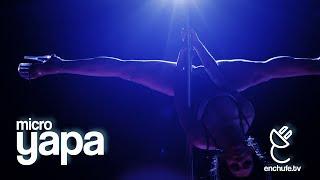 microyapa baile del tubo pole dance