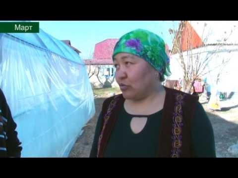 видео: Мыкты чарба-социалдык куноскана 26 05 16