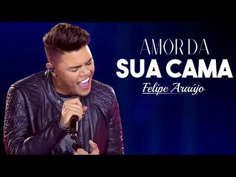 Felipe Araújo   Amor Da Sua Cama  Download   Letra