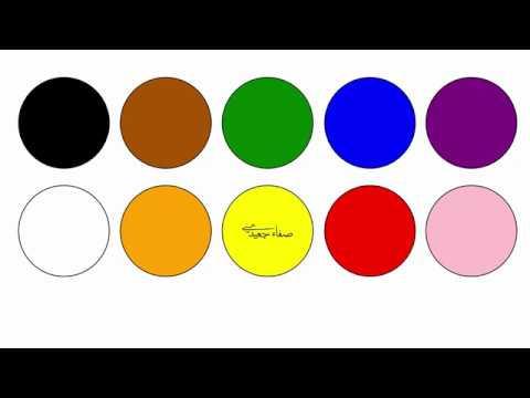My favourite colour اللون المفضل لي