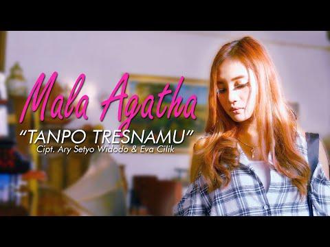 Mala Agatha - Tanpo Tresnamu Lyrics (Lirik Lagu)