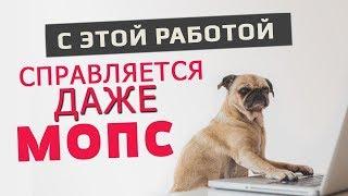 видео Как начать зарабатывать в интернете