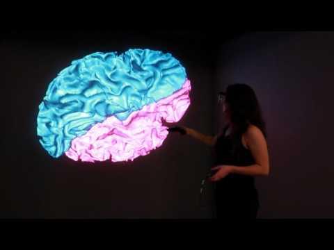Cornell Medical School - 3D CAVE