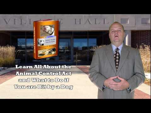 Dog Bite Attorney in McHenry, IL