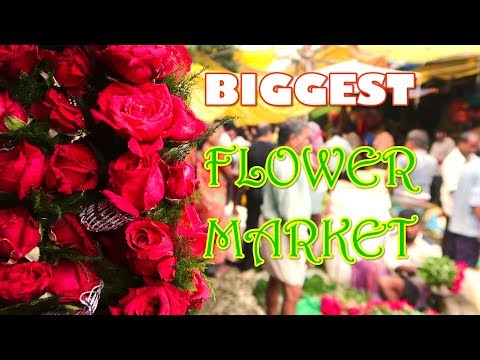 Biggest Flower Market of Asia is in India