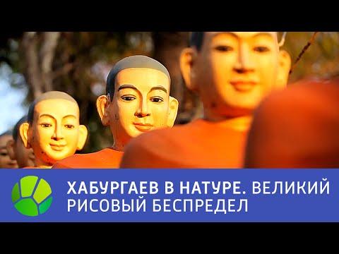 Российские - Смотреть онлайн фильмы для мегалайнеров