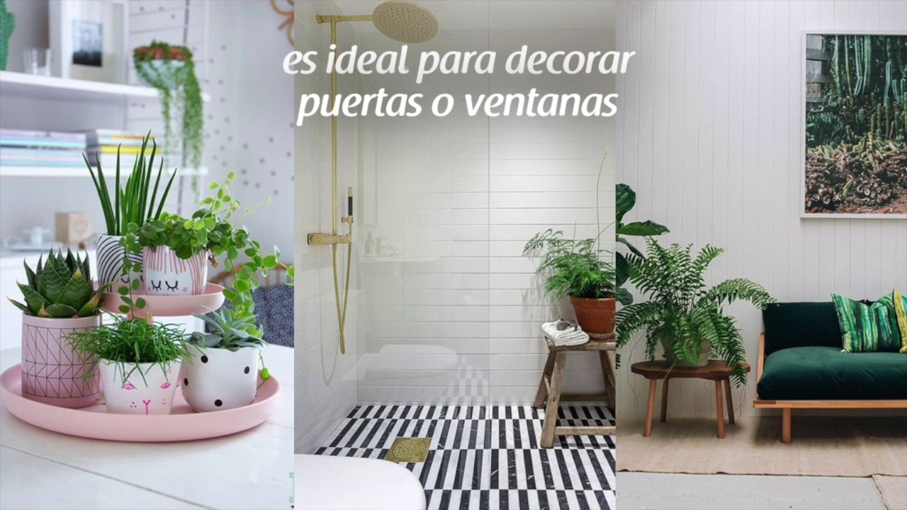 Tendencias en colores para la decoraci n de interiores for Tendencias pintura paredes 2017