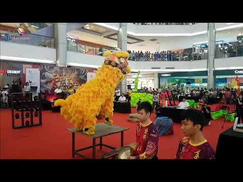 Traditional lion dance by Selangor Sar Ping lion dance at the 2nd Selangor Lion Dance Championship from YouTube · Duration:  9 minutes 31 seconds