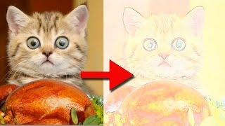 Как сделать рисунок из фото