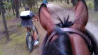 II Teren o zachodzie słońca - Jeźdźcy kontra rowerzyści 2013r. :D:D:D