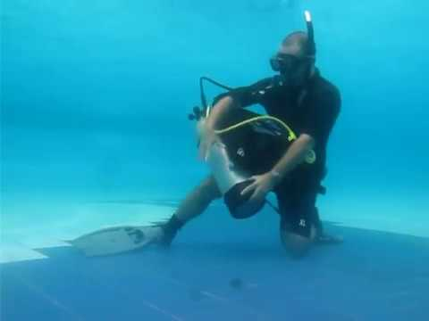 Remove, replace, adjust and secure the scuba unit (underwater) - Demo by Alain Barrat.