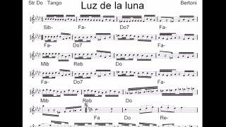 LUZ DE LA LUNA tango per Fisarmonica accordion e Orchestra del M Stefano BERTONI