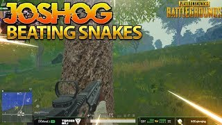 BEATING SNAKES IN PUBG - JOSHOG PUBG HIGHLIGHTS