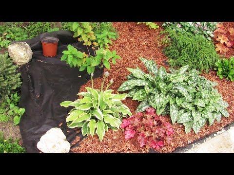 видео: Как оформить клумбу декоративной корой  Используем Агротекс-Гео