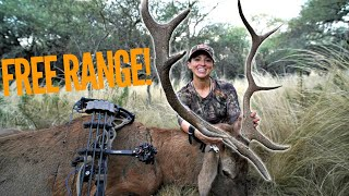 Sarah Bow Hunts Free Ranging Stag In Argentina | Bowmar Bowhunting |